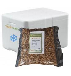 1 Liter Soldaterflue i frostpakke