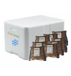 8 Liter Soldaterflue i frostpakke